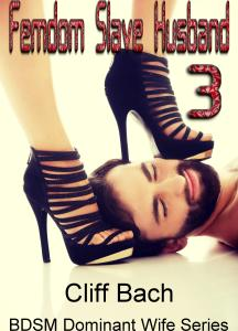 Femdom Slave Husband 3